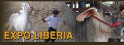 Expo Liberia